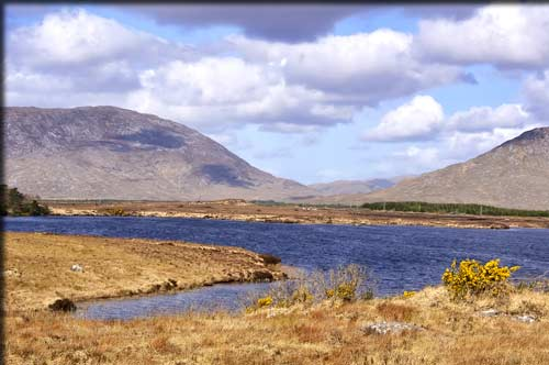 Fishing  in Ireland's lakes - angling heaven